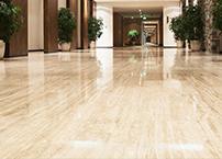地板專業清潔打腊